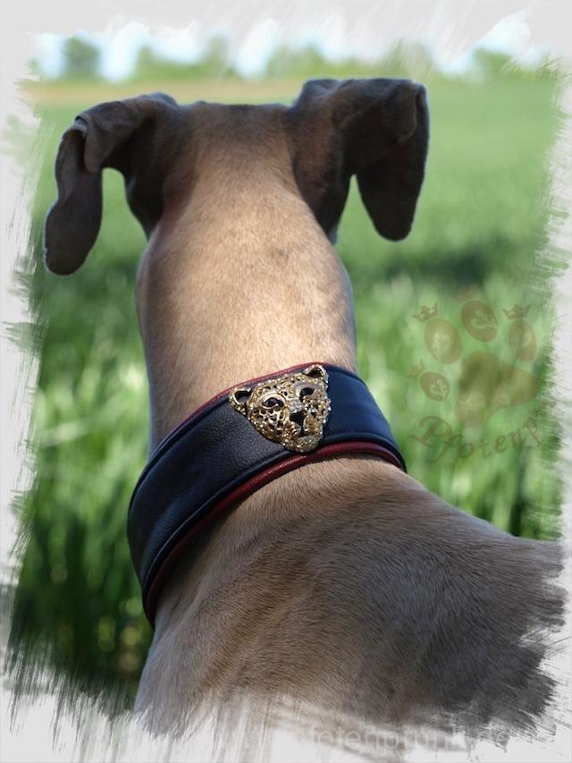 Tierzubehör | Kostenlose Schnittmuster, Nähmagazin & Co rund ums Nähen